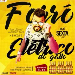 panfleto Forró Elétrico do Gallo - Walber Luiz