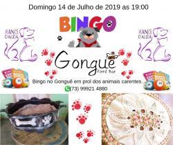 panfleto Bingo Animal