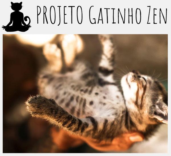 Projeto Gatinho Zen